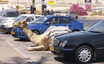 smiješne slike Deva u parkingu