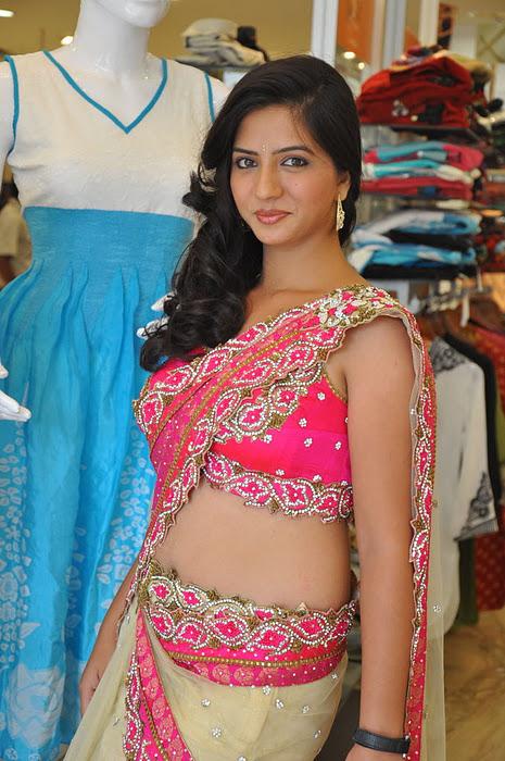 South New Desi Actress Nisha Shah Latest Cute Saree Photos glamour images