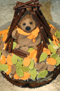 toffee apple hedgehog bonfire night cake