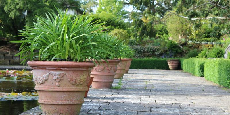 Havefolket: enkle ideer til krukkerne