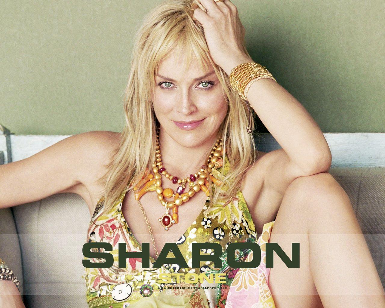 http://1.bp.blogspot.com/-1dOq6cIbsGc/UJksD4GVrFI/AAAAAAAAezk/BUFaDSi4VRM/s1600/sharon-stone-sexy.jpg