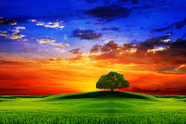 Best nature images |Nature Wallpapers