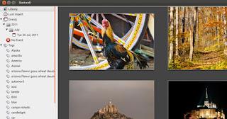 ubuntu photos and videos