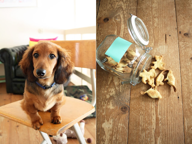 hondenkoekjes - Food Bandits voor NFM blog