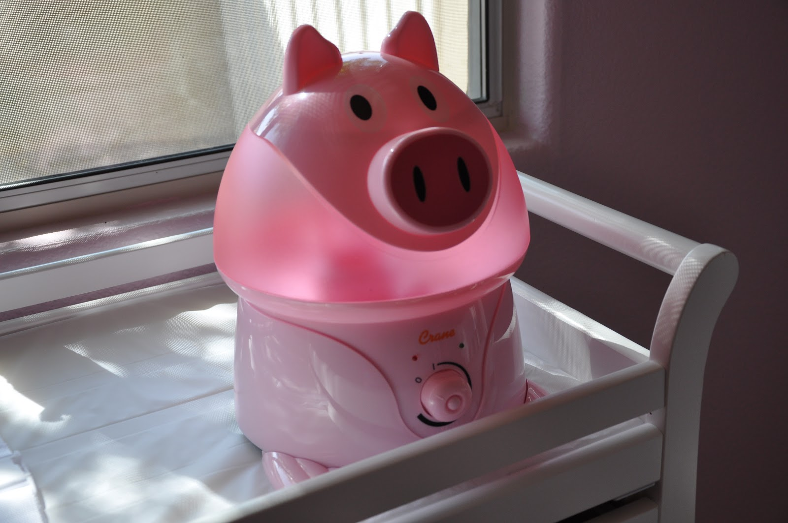 And yes Crane does sell an adorable Hello Kitty Humidifier however I  #753840