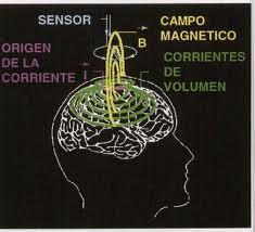 Los efectos del magnetismo en los seres humanos El-campo-magn%25C3%25A9itico-humano-afecta-a-la-Tierra