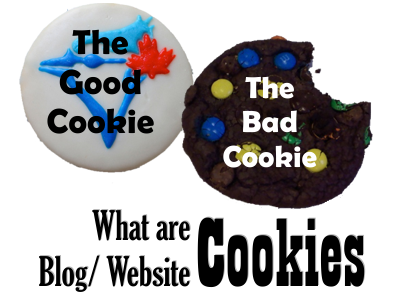 What are blog/ website cookies front