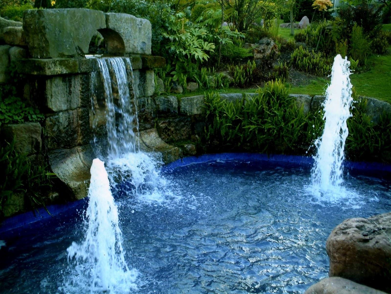 El morri n denuncia vecinal qu pasa con el estanque y for Cascada estanque