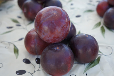 Plums from Shamba Farms at the West End Farmers Market taken by Knerq