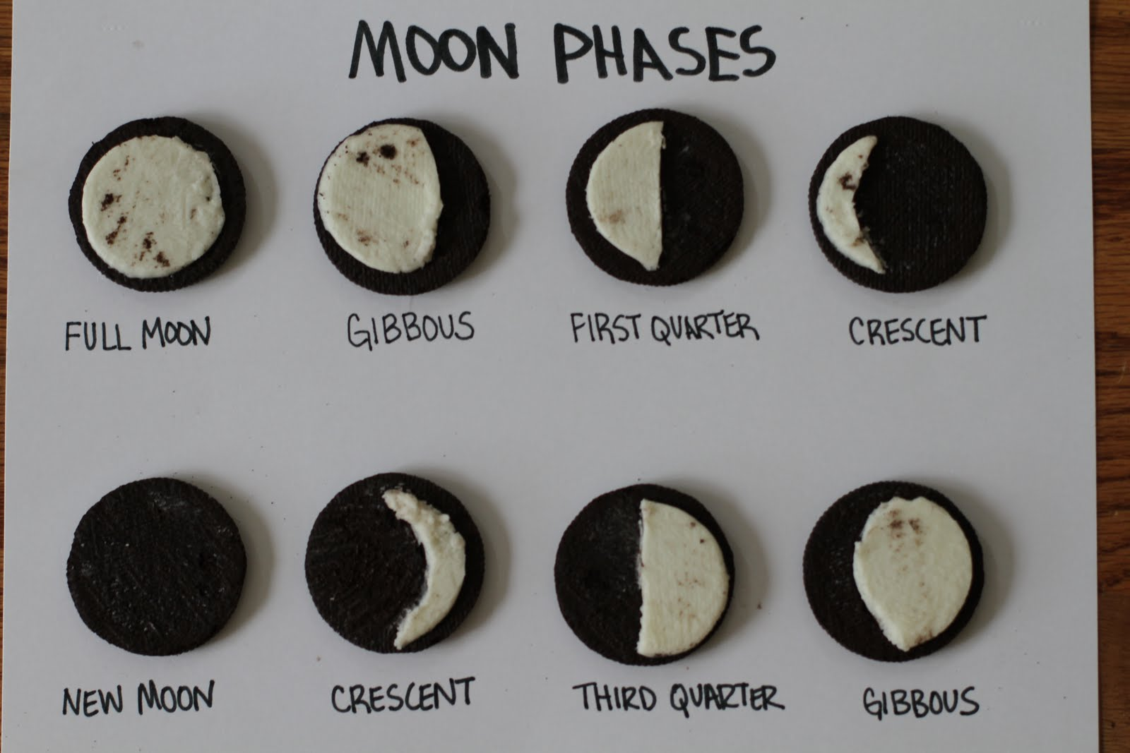 Today we learned about the phases of the moon and did an activity I ...
