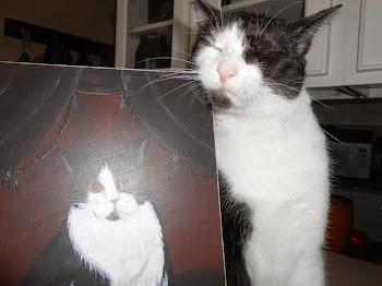 My Cat Henry~~