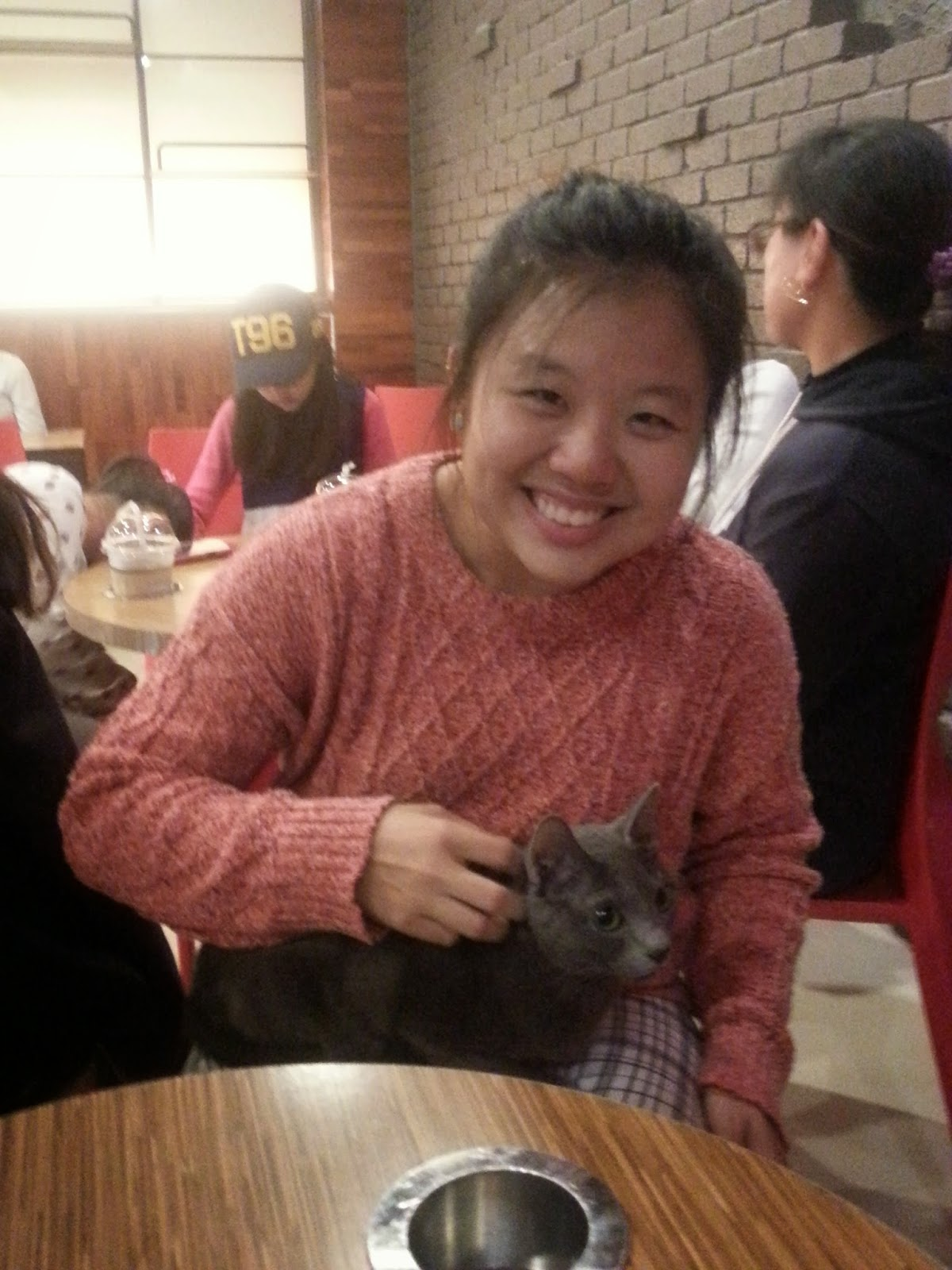 Cheongchun Cat Cafe