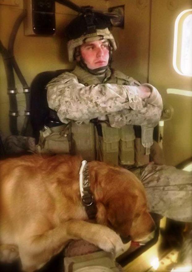 O melhor amigo de um soldado