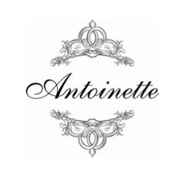 New Designer Multi-Label Store Antoinette Now Open!