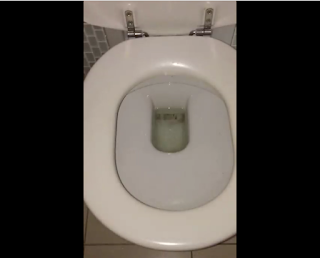 Just Australian Thing (Reminder to Always Flush your Toilet before Used)
