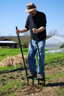 Gardener digging soil with a broadfork