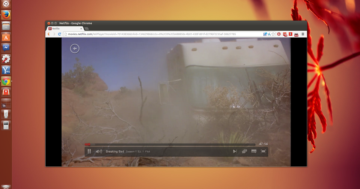 Pipelight use silverlight in your linux browser to watch netflix maxdome videos and more web for Linux watch