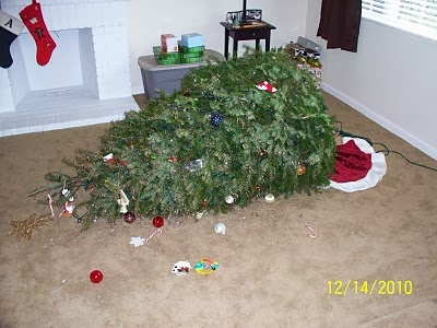 does anyone remember christmas 2010 when 7 month old ryan pulled over our christmas tree - Baby Gate For Christmas Tree