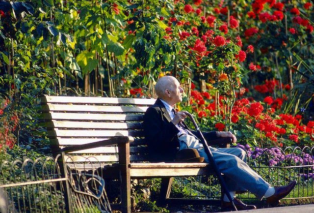 Old man sitting on a park bench