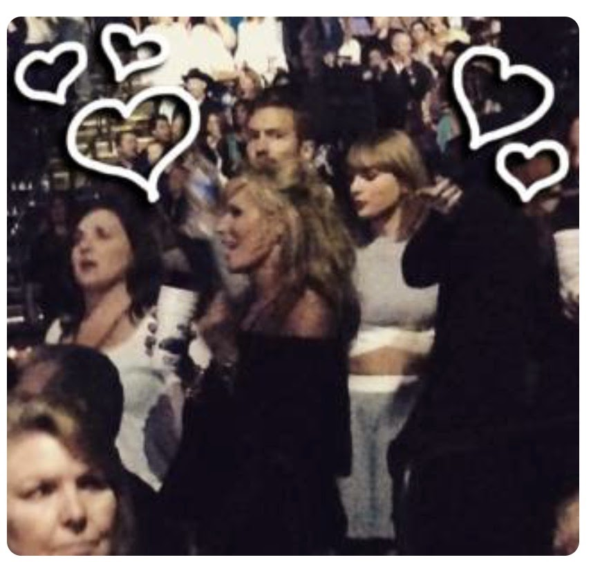 taylor swift at concert with calvin harris