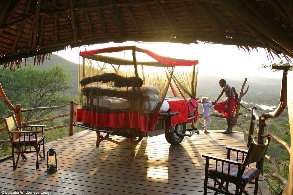 Happy Rhino Hotel Cape Town Reviews