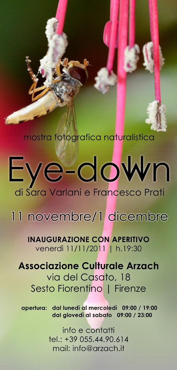 hiperica_lady_boheme_blog_cucina_ricette_gustose_facili_e_veloci_locandina_mostra_eye_down