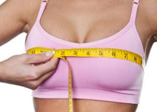 cara mengukur lingkar dada bust