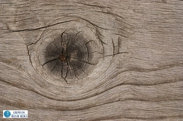 mantenimiento de una casa de madera
