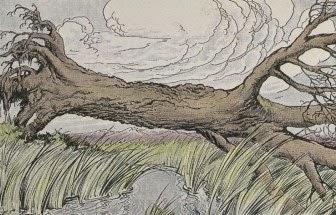 """Cerita Anak: """"Pohon Oak dan Alang-alang"""""""