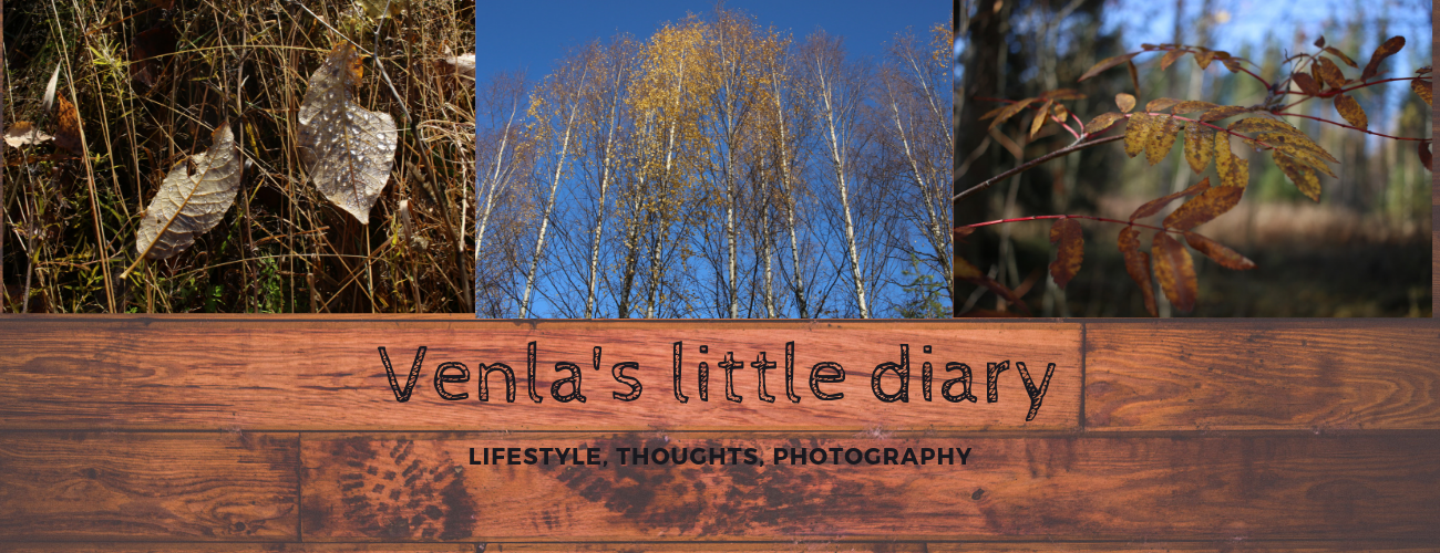 Venla's little diary