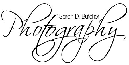 Sarah D Butcher - Photography