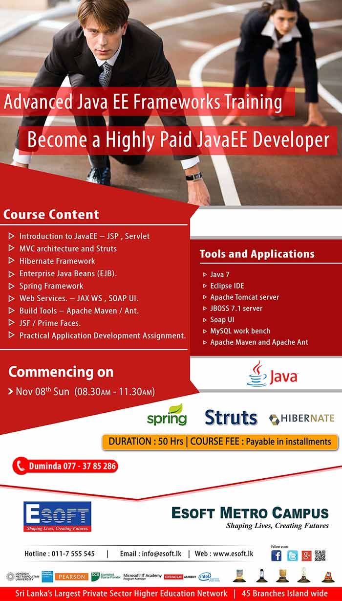 Become a Highly Paid JavaEE Developer