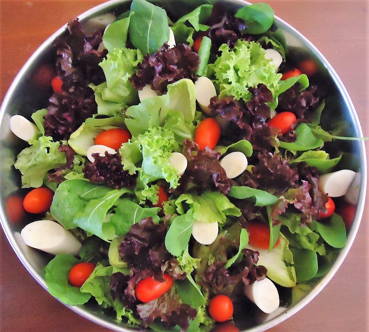 Salpicão de Repolho | salada | Repolho receita, …