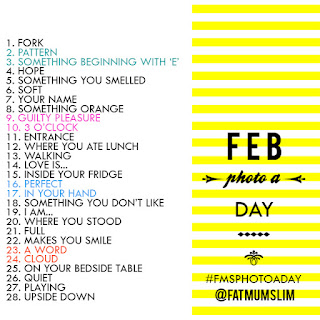 Fat Mum Slim - February 2013 Photo a Day list