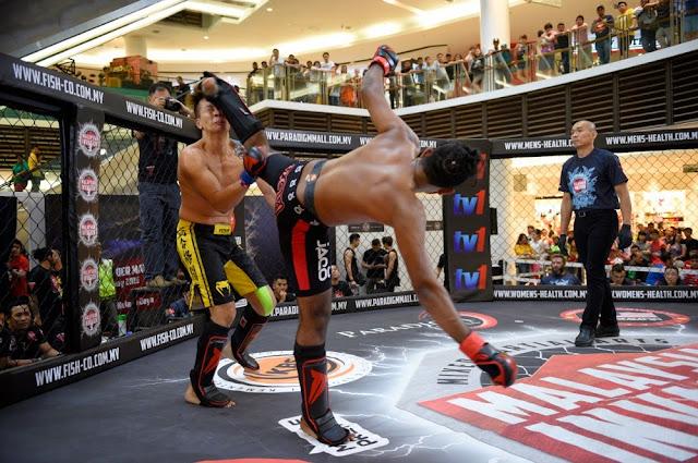 mimma3 ladder match paradigm malaysia mma kick