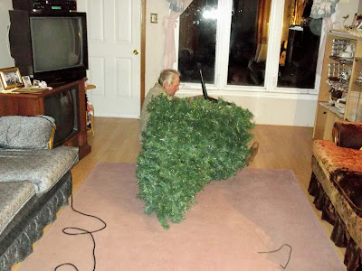 man adjusts christmas tree