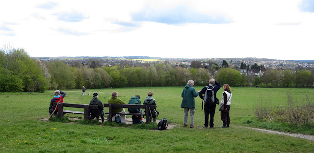 Some of the group on a seat at the top of the meadow.  Darrick Wood, 21 April 2012.