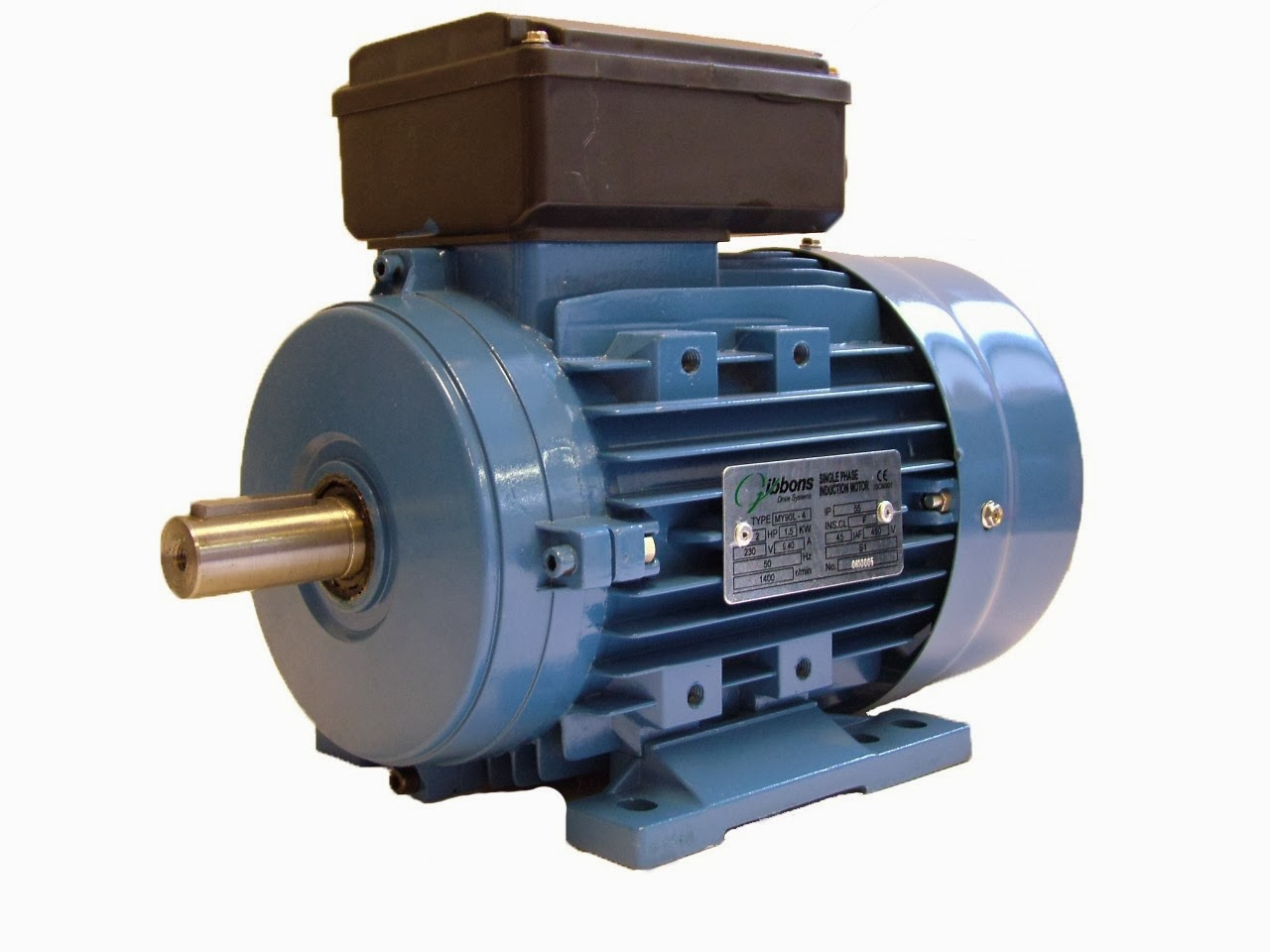 Understanding a single-phase electric motor nameplate - The Gibbons ...