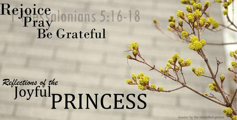 Reflections of the Joyful Princess