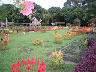 taman bunga yang indah
