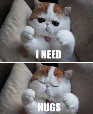 http://1.bp.blogspot.com/-1j0TvHflT08/UbeqfPd2srI/AAAAAAAAAi4/Mb70XFYNWgc/s320/Anti_grumpy_cat-resizecrop--.jpg