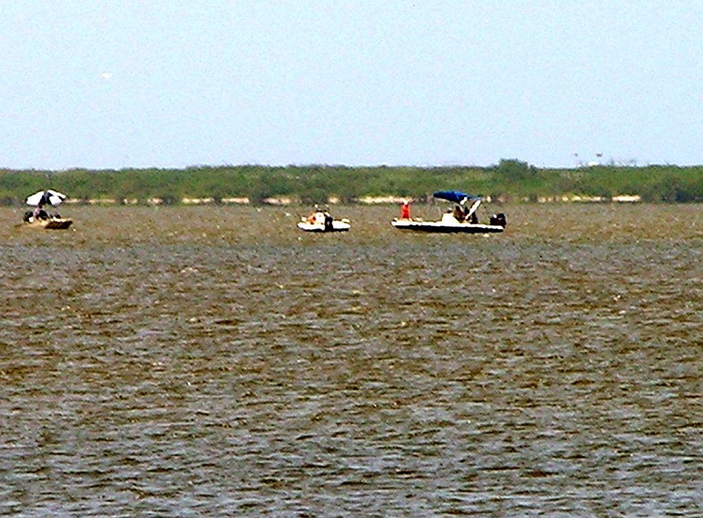 Mosquito Lagoon Indian River Fishing Playalinda Beach Blues