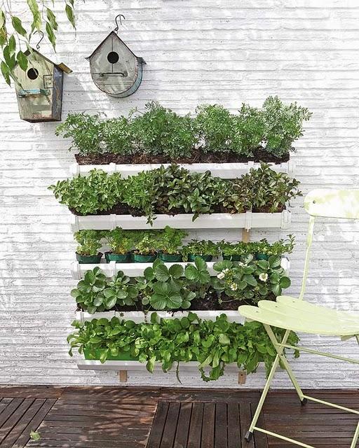 jardim vertical apartamento pequeno: Modah: Horta vertical em sacadas de apartamentos e pequenos espaços
