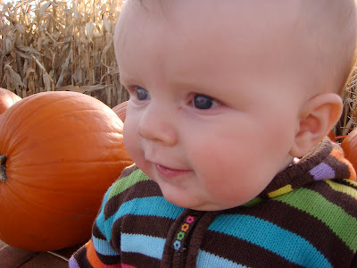 Baby and Pumpkins