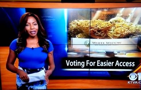 reportera morena que renuncia en vivo por la marihuana