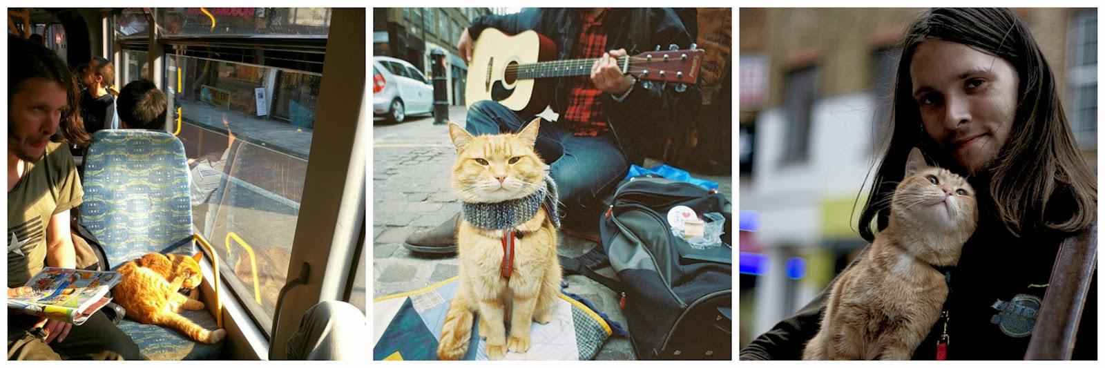 http://1.bp.blogspot.com/-1kHVFE31rvk/UufVWEwDUEI/AAAAAAAAAUk/SkFtYwaku8w/s1600/James+Bowen+and+a+Street+Cat+Named+Bob.jpg
