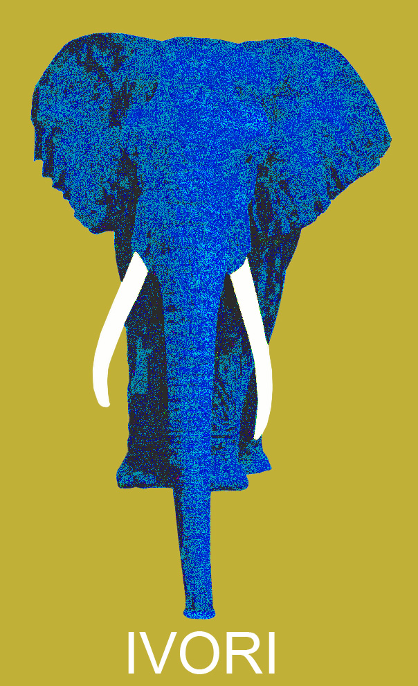 dibujo, elefante, marfil
