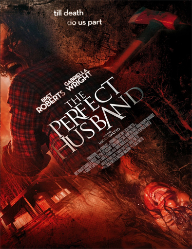 Ver The Perfect Husband (2014) Online