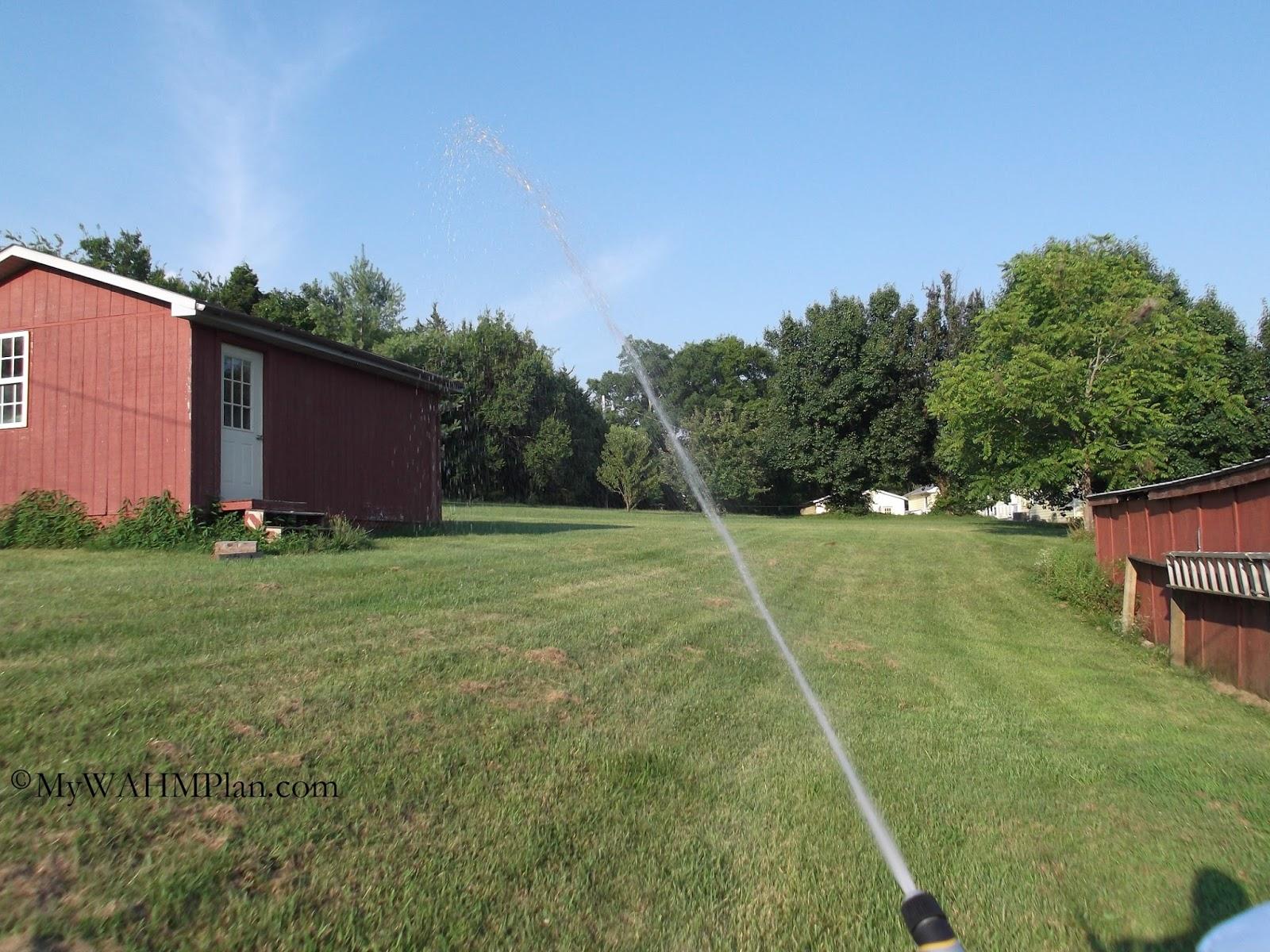 Summer watering #gardening