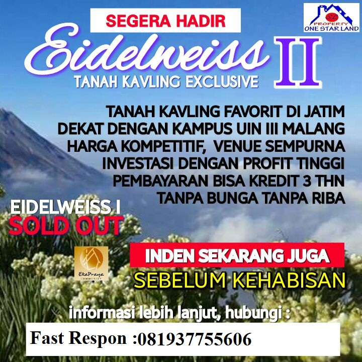 Info Kavling Di Malang
